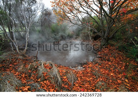Boiling Geothermal Pool in Autumn, Kuirau Park, Rotorua, North Island of New Zealand - stock photo