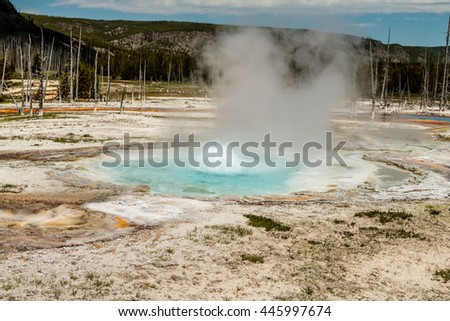 Boiling Spring Water, Yellowstone National Park