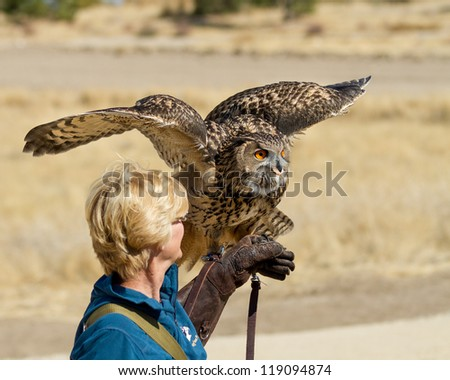BOISE, IDAHO - OCTOBER 7 : Unidentified trainer at World Center for the Birds of Prey holds a Eurasian Eagle owl on October 7, 2012. - stock photo