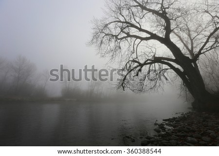 Boise River - stock photo