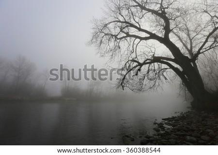Boise River - stock photo