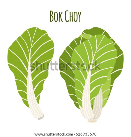 Chinese Cabbage Cartoon Stock Images, Royalty-Free Images ...