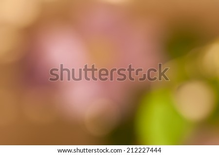 Boke on Smooth Pastel Abstract Gradient Background, green, yellow, beige and pink colors - stock photo