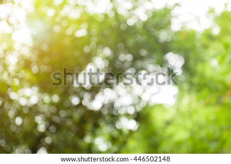 Bokeh and blur background