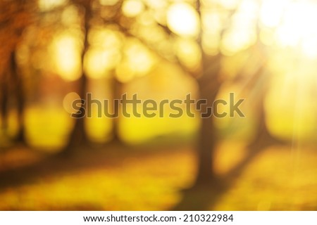 Bokeh autumn park background. Bright yellow and red sunny trees fall bokeh background.   - stock photo