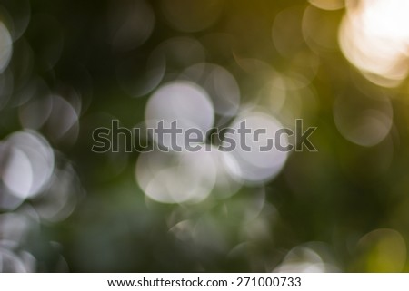 bokeh background or Christmas background