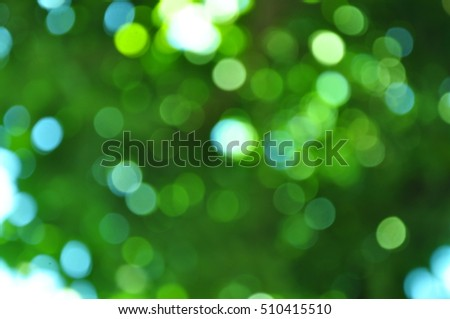 Bokeh green tree.