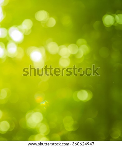 Bokeh light from the sun through the leaves.