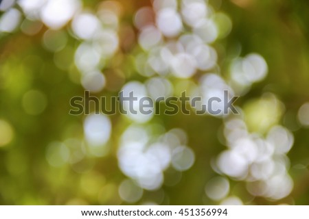 Bokeh natural color background Warm Filter leaf of the tree fresh green, abstract blurred foliage and bright summer sunlight with copy space - stock photo