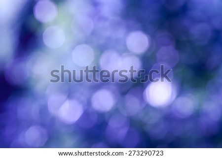 Bokeh Nature background.  abstract violet background from tree. Defocused lights from tree and leaves