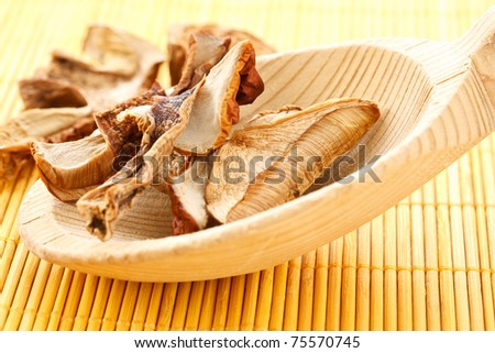 Boletus dried on wooden spoon