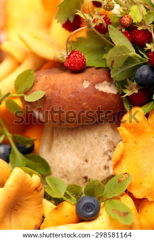 boletus. Little mushroom,  other forest mushrooms and berries of  bilberry ,  wild strawberry. - stock photo