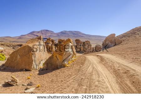 Bolivia, Antiplano, Los Lipez: Rocks and Azorella compacta (Yareta) - stock photo