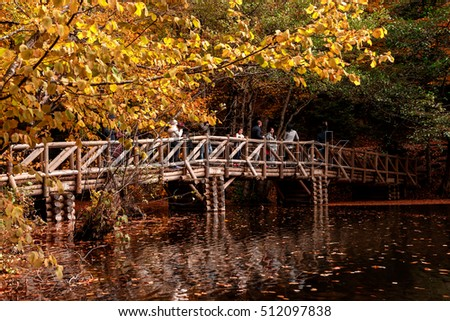 BOLU, TURKEY - NOVEMBER 06, 2016: View of people in forest with wooden bridge, fallen leaves and lake in Yedigoller. Yedigoller, also known seven lakes, is national park in Bolu, Turkey.