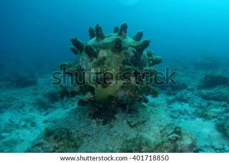 Bomb underwater - stock photo