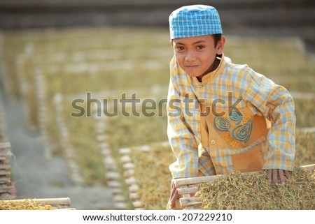 Bondowoso, INDONESIA - September 15: Unidentified poor kid plays in dry tea yard on September 15, 2012. Bondowoso involves cultures from different nations.There is a big Arabic there for long time  - stock photo