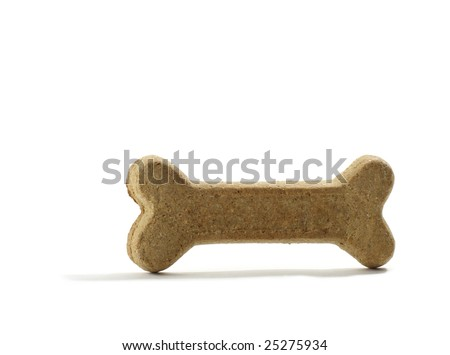 Bone shaped Dog biscuit - stock photo