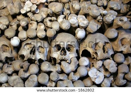 Bones of victims of black death - stock photo