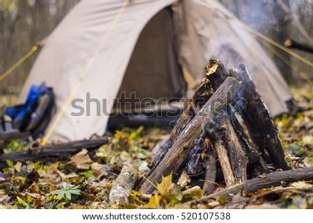 Bonfire and camping tent in the forest a
