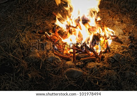 Bonfire detail at night