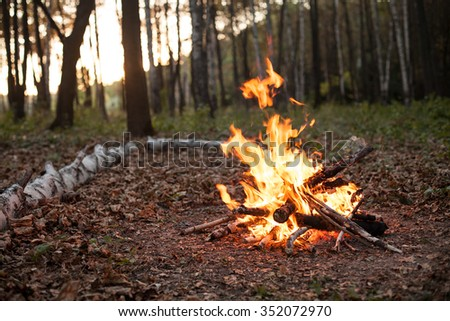 Bonfire. Forest and rest