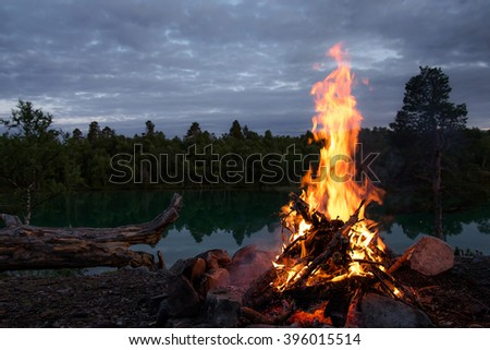 bonfire in a warm summer night