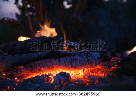 bonfire in meadow at summer night