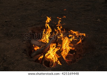 Bonfire in the forest in the evening. - stock photo