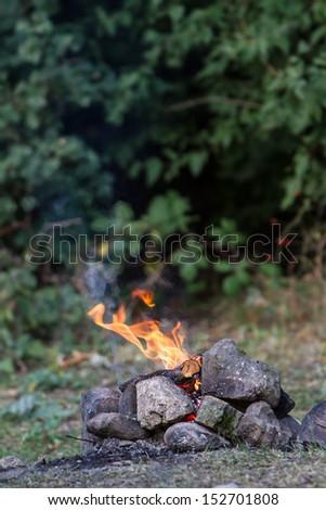 bonfire on natural background - stock photo