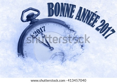 Bonne Annee, Happy New Year 2017 greeting in French language, text, greeting card 2017 - stock photo