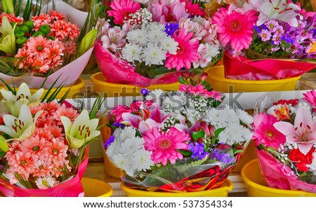 Bonsecours, France - june 22 2016 : close up of flowers at a florist