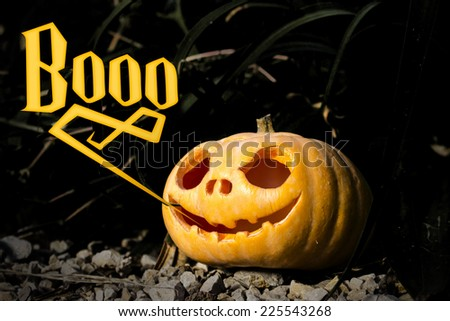 Boo typography Halloween scary pumpkin jack-o-lantern with a smile in dark grass thicket on the rocks - stock photo