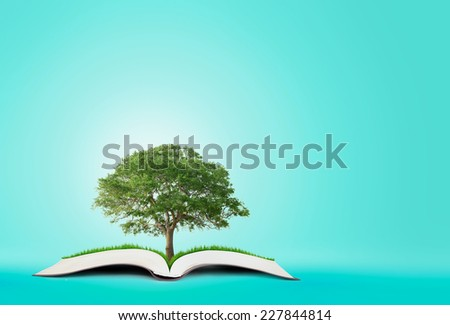 book of nature on blue background - stock photo