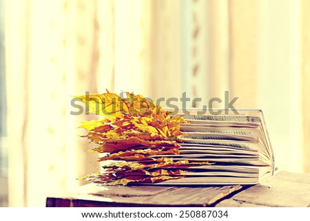 book pages yellow leaves of autumn concept - stock photo