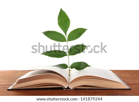 Book with plant on table on white background