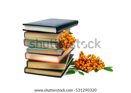 books and a bunch of rowan berries isolated on white background.
