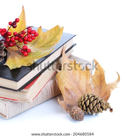 Books and autumn leaves isolated on white - stock photo