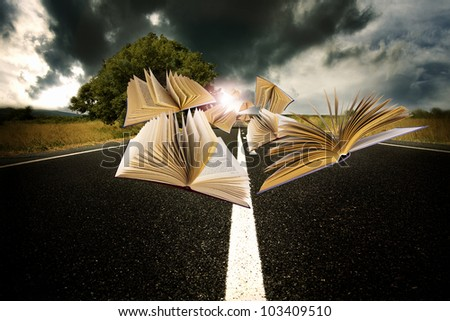 books flying over the landscape of the road - stock photo