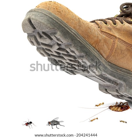 Boot steps on a on housing pests isolated on the white background - Concept of a pest control - stock photo