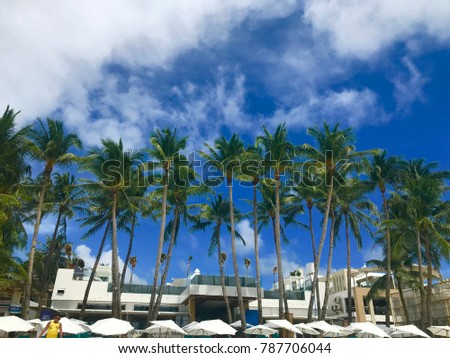 Boracay Island, Philippines - November 19, 2017: Palm trees and blue sky