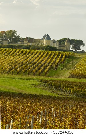 Bordeaux Chateau d Yquem - stock photo