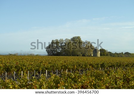 Bordeaux Pauillac Chateau Latour - stock photo
