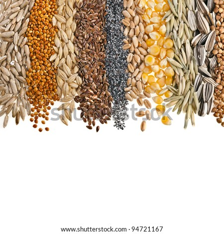 Border Collection of Cereal Grains and Seeds : Rye, Wheat, Barley, Oat, Sunflower, Corn, Flax, Poppy, Millet close up isolated on white - stock photo