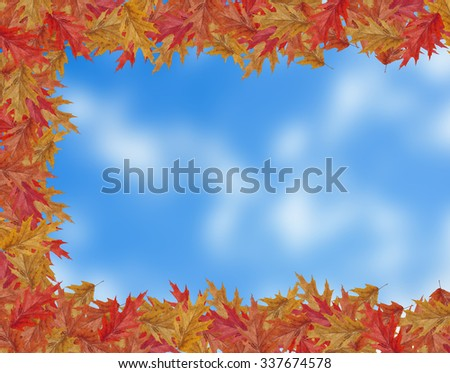 Border Frame of colored falling maple leafs with copy space on blurred sky background