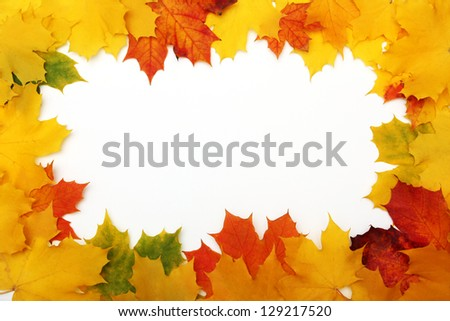 Border from autumn maple leaves isolated on a white background.