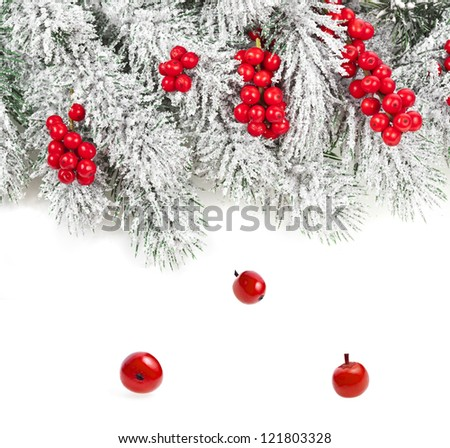 Border of Christmas fir branch with red berries on white background - stock photo