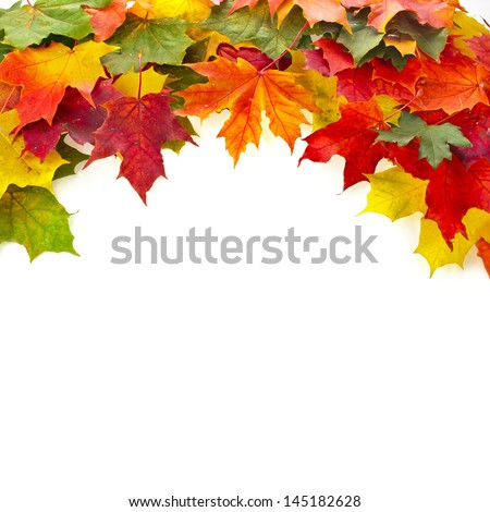 Border of colored falling maple leafs with copy space on white background - stock photo