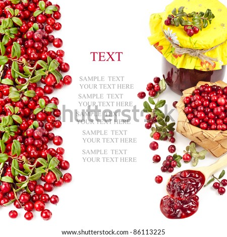 Border of cranberries produce with copy space isolated on white background - stock photo