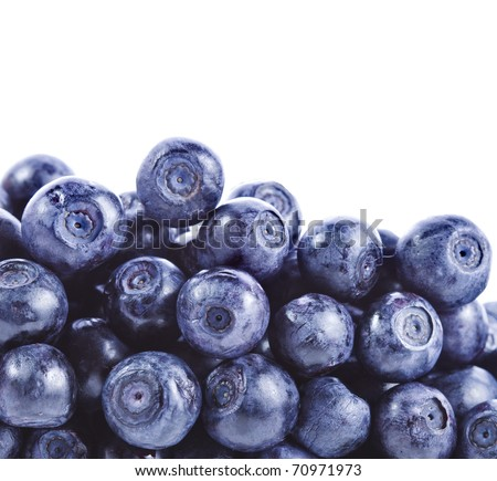 border of fresh heap blueberry close up macro isolated over a white background - stock photo