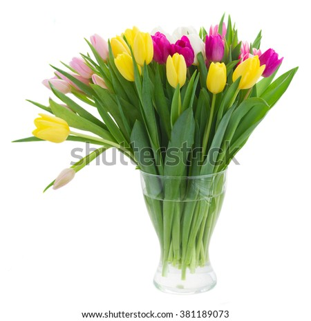 border of fresh purple, pink, yellow and white tulip flowers in vase isolated on white background